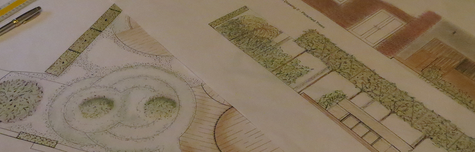 Garden Design and Elevated Drawing for a house in Bristol
