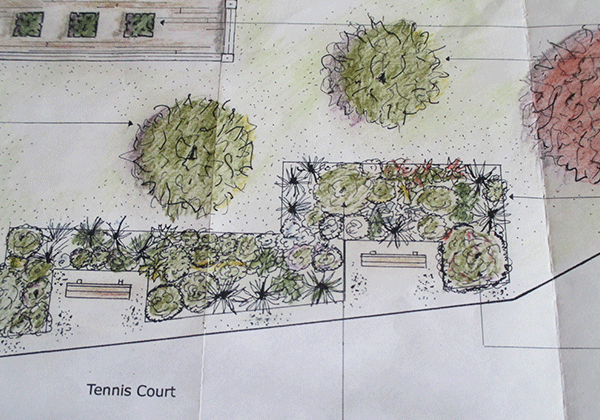 Garden Planting Drawing for a back garden